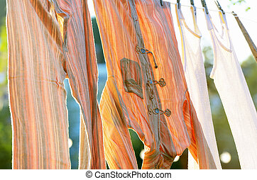 underwear drying on the clothesline