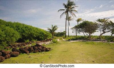 undeveloped beach Nicaragua - undeveloped beach Caribbean...