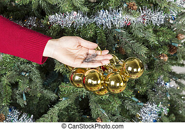 Undressing the Christmas Tree