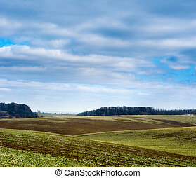 Undulating plowed field in early spring, a group of trees on the horizon, white clouds in the blue sky