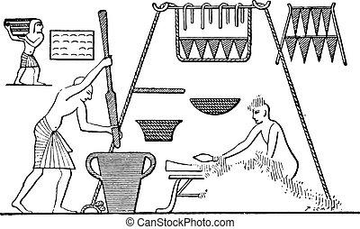 une, égyptien, cuisine, à, garde-manger, vendange, engraving.