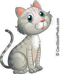 une, adorable, chat