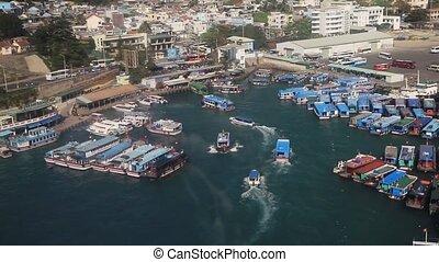 une, oiseau, entrer, paysage, busiest, bateaux, vue, ports,...