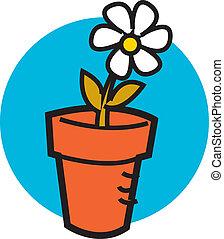 une, pot fleurs, joli, pâquerette