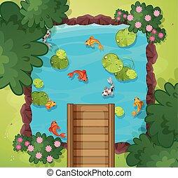 une, vue aérienne, de, pêcher étang