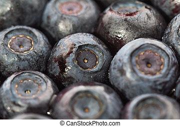 Unfrozen blueberries. Macro. Closeup. Shallow depth of view.