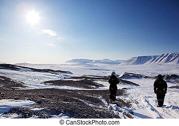 unfruchtbar, winterlandschaft