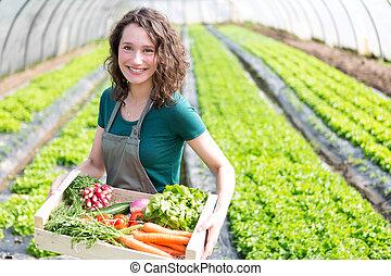 ung, attraktiv, kvinna, skörda, grönsak, in, a, växthus