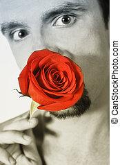 ung man, holdingen, a, rött rosa