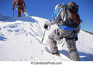 unga manar, alpin klättrande, på, snöig, bergstopp