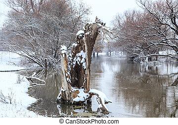 ungarn, landschaftsbild, fluß, winter, zagyva