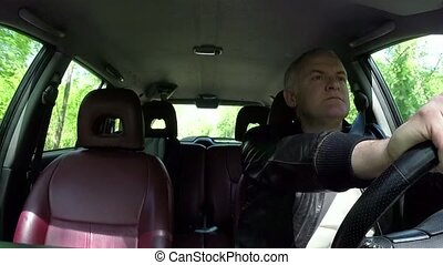 unglück, absturz, Pendler, fahren, Leute, Auto,...