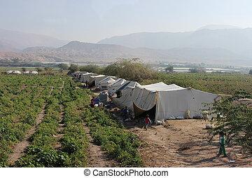 unhcr, 避難者キャンプ, ヨルダン