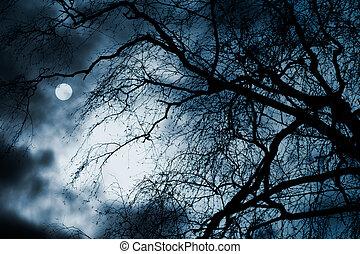 unheimlicher , dunkel, szenerie, mit, textilfreie , bäume, vollmond, und, wolkenhimmel