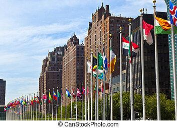 uni, quartiers généraux, nations, onu, drapeaux, membres