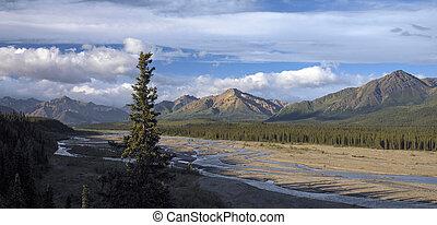 unidas, parque, nacional, -, denali, alasca, estados
