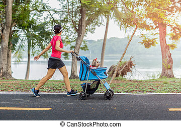Unidentifile woman exercise walking in the park with small dog in stroller.