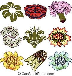 unikalny, kwiaty, różny