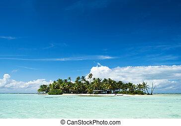 Uninhabited or desert island in the Blue Lagoon inside Rangiroa atoll, an island of the Tahiti archipelago French Polynesia in the Pacific Ocean.