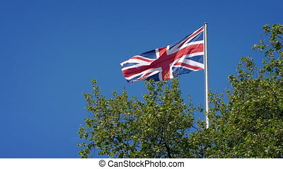 Union Jack Flag Above Trees In The Wind - Union Jack flag...