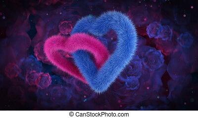 Union of gender hearts, blue pink on color rose bg