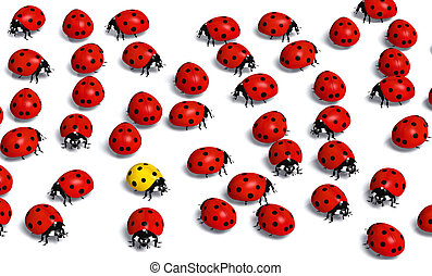 unique yellow ladybug stays in the middle of a crowd of the red ones, on a white background