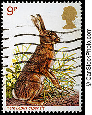 Postage Stamp - UNITED KINGDOM - CIRCA 1977: A British Used...