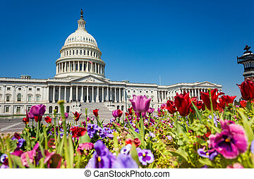 United States Capitol Building through flowers