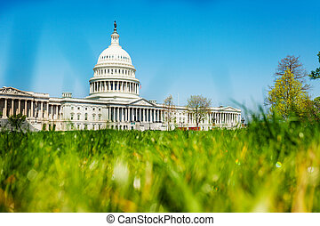 United States Capitol Building through grass