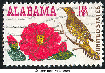 Camellia - UNITED STATES - CIRCA 1969: stamp printed by ...