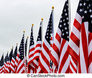 United States Flags in a row