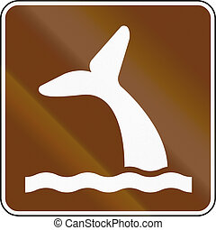United States MUTCD guide road sign - Whale watching
