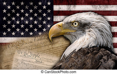 United States of America - American flag with the bald eagle...