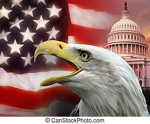 United States of America - Washington DC - Symbols of The...
