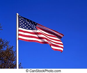Unitedf States of America flag. - United States of America ...