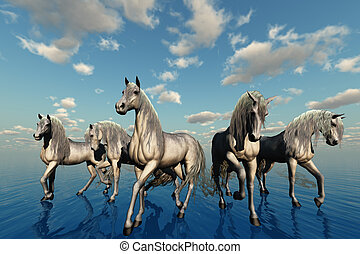 UNITY - A group of horses with the same breed, temperament...