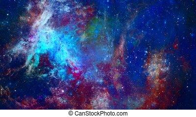 univers, vif