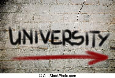 universidad, concepto