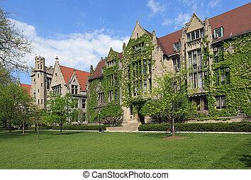 universidade, atraente, campus