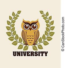 università, disegno