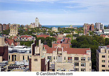 universiteit van chicago