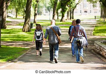 universitet, deltagare, vandrande, på, campus, väg