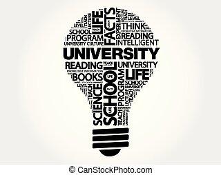 UNIVERSITY bulb word cloud, business concept