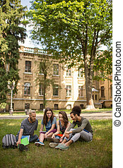 University campus students sitting on grass.
