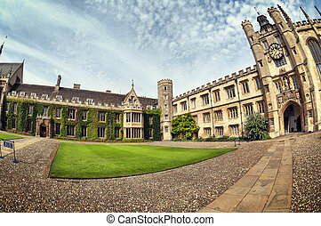 Ivy covered wall of Trinity College, Cambridge, UK.