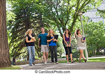University Students on Campus - University students walking...