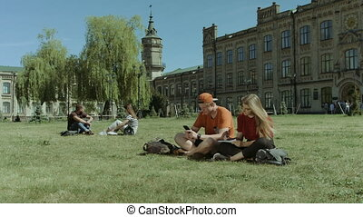 University students studying on campus lawn - Two cheerful...