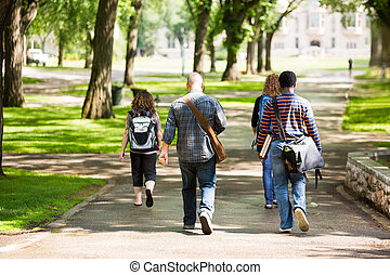 University Students Walking On Campus Road - Rear view of...