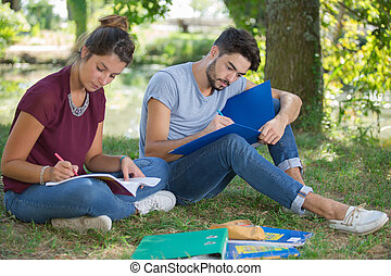university sweethearts doing their assignments in the park