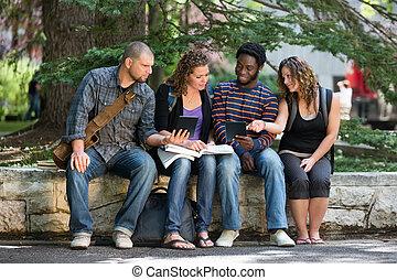 uniwersytet, studenci, używając, palcowa pastylka, na, campus